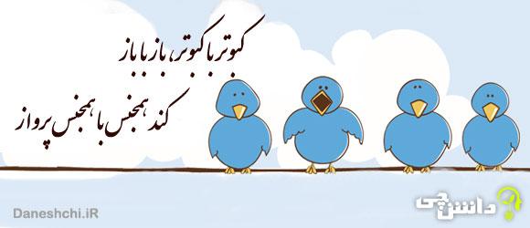 کبوتر با کبوتر باز با باز، کند هم جنس با هم جنس پرواز