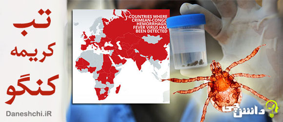 بیماری تب کریمه کنگو، علایم و درمان آن