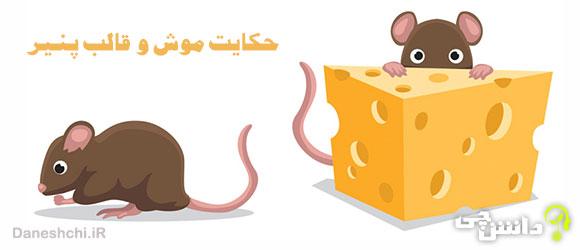 حکایت موش و قالب پنیر