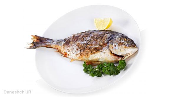 پروتئین ماهی
