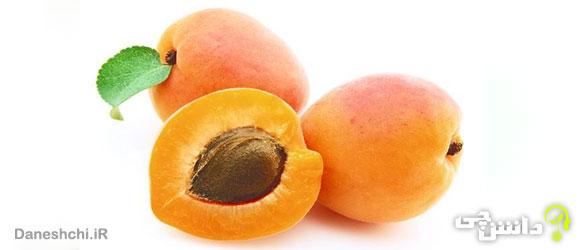 میوه زردآلو (Armenian plum)