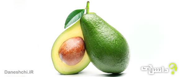 میوه آووکادو (Avocado)
