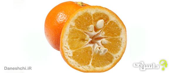 میوه نارنج (Bitter orange )