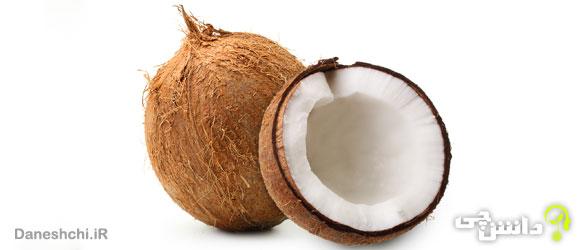 میوه نارگیل (Coconut)