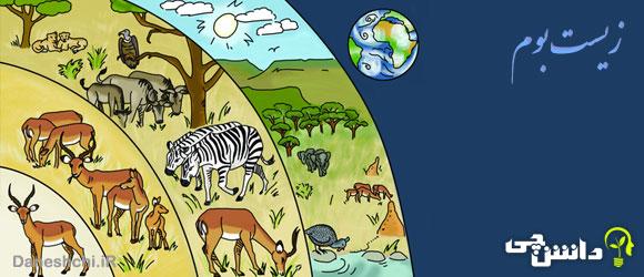 تحقیق در مورد زیست بوم یا بیوم