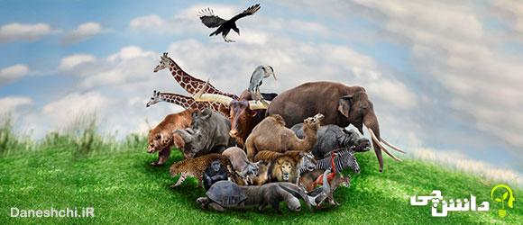 تحقیق درباره تنوع زیستی